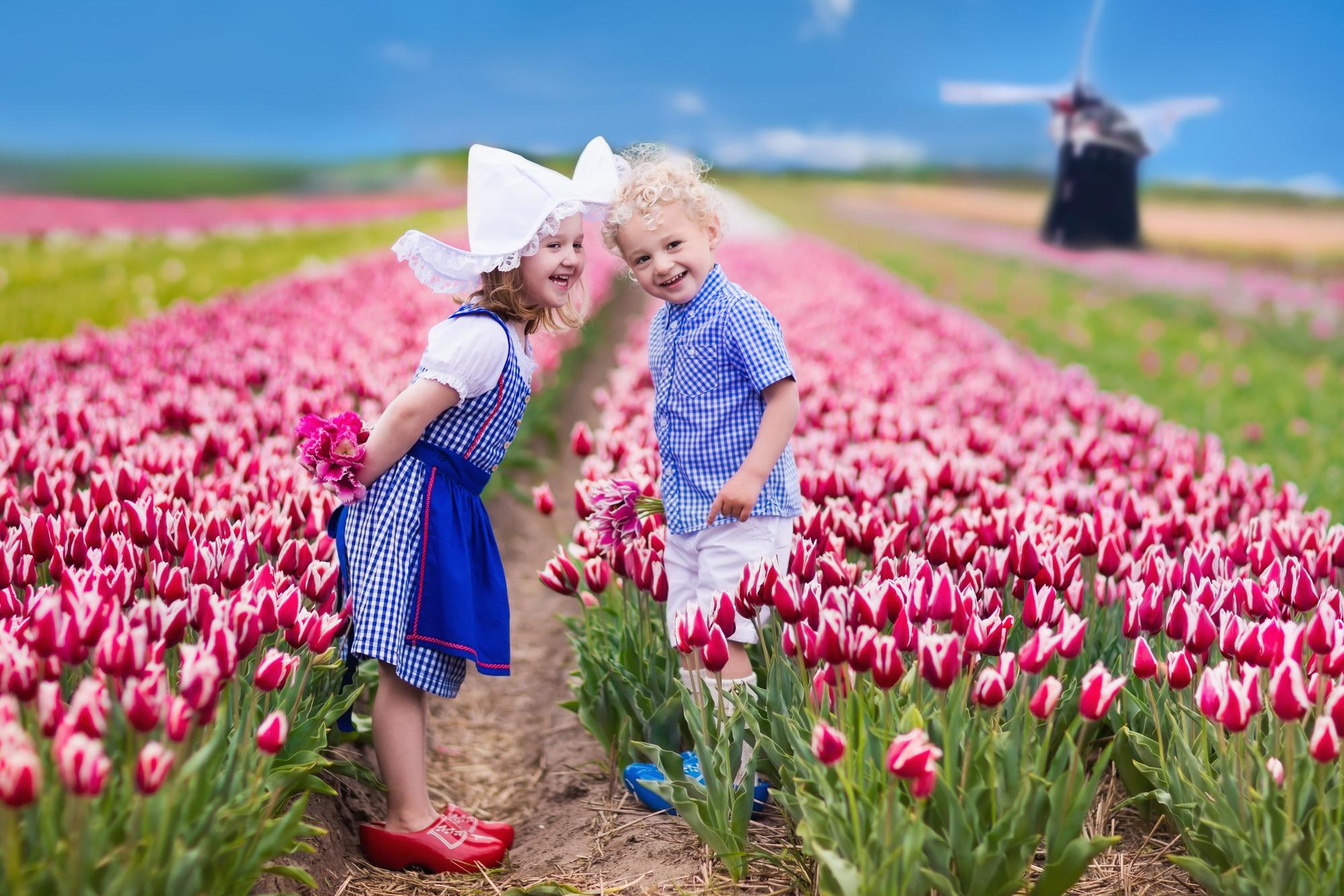 【赏花】荷兰 德国10日清新田园10日游【库肯霍夫/汉莎直飞/海德堡