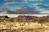 纳米比亚12日游【辛巴红泥人部落/鲸湾出海/苏丝斯黎红色沙漠】
