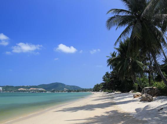 【打卡苏梅】泰国苏梅岛4晚5天半自助【塔娜美居酒店/查汶海滩/品质四钻/出海+环岛/赠接送机】