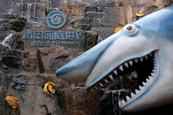 【购实惠】山东:青岛/烟台/威海双高5日【刘公岛/养马岛/蓬莱】