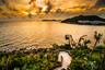 【私家团】澳门+珠海东澳岛4晚5日半自助游【澳门深度景点探秘/黑沙海滩/全程五星级】