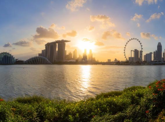 【明星喜來登】新加坡經典五星4晚6天百變自由行【喜來登烏節路/可增訂動物園+濱海灣花園+鴨子船門票】