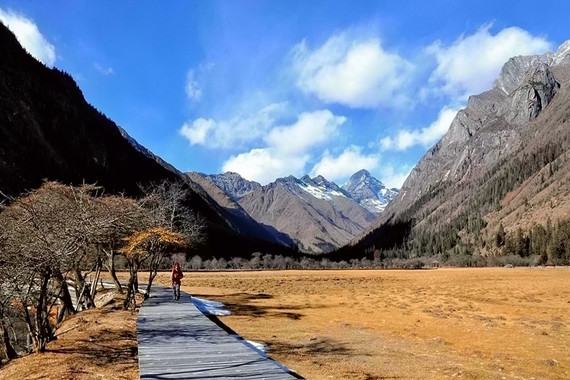 西藏 林芝三日游