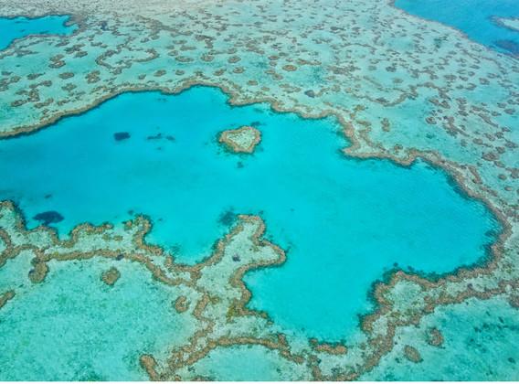 澳大利亚汉密尔顿岛心形礁浪漫10日游【澳航直飞+心形大堡礁出海游船+三晚珊瑚景酒店+考拉餐厅】