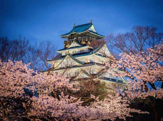 日本:鼎级和风 本州伊豆半岛双温泉美食7日