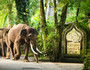 巴厘岛5晚7天半自助【宝贝计划/大象公园/亲子SPA/全程专属车导】