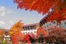 【玩转东北】沈阳/盘锦/红海滩/关门山红叶/中朝边境/丹东双高5日游