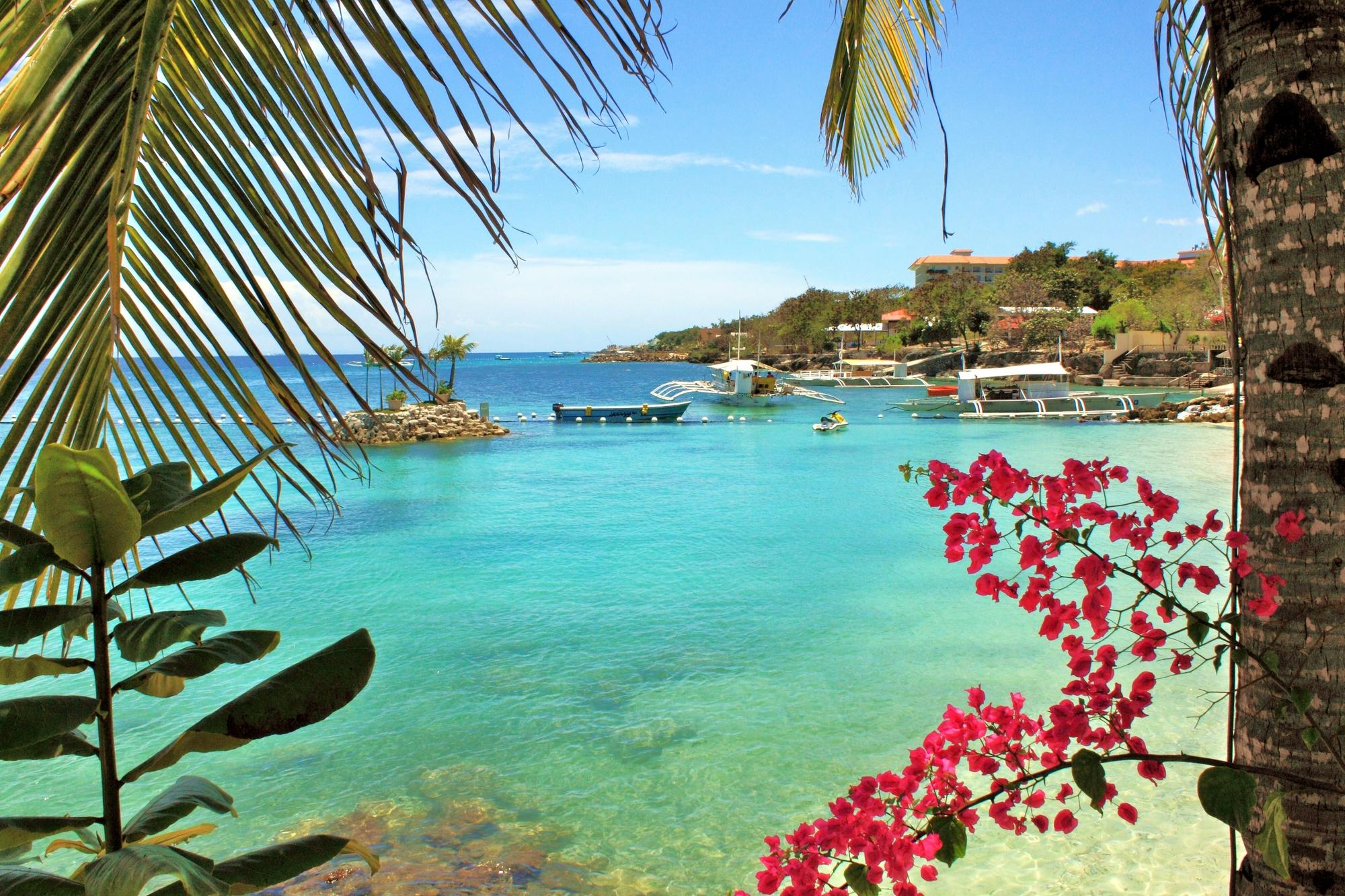 【鲸鲨共舞】菲律宾/资生堂岛/宿务/国泰直航5天原生态环保探奇之旅