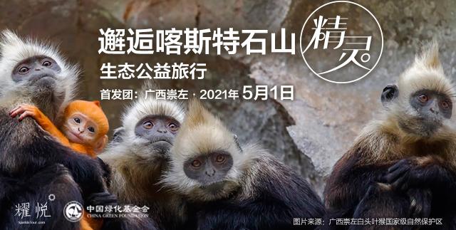 广西崇左 邂逅喀斯特石山精灵 生态之旅