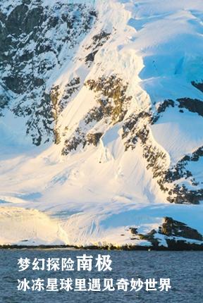 梦幻探险南极,冰冻星球里遇见奇妙世界