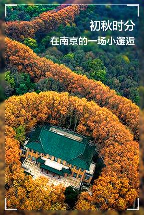 初秋时分,在南京的一场小邂逅